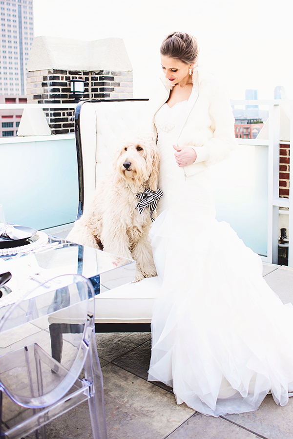 Gorgeous Glam Bride with an Adorable Dog| Grace Aston Photography | Glamorous Rooftop Wedding Shoot in New York City