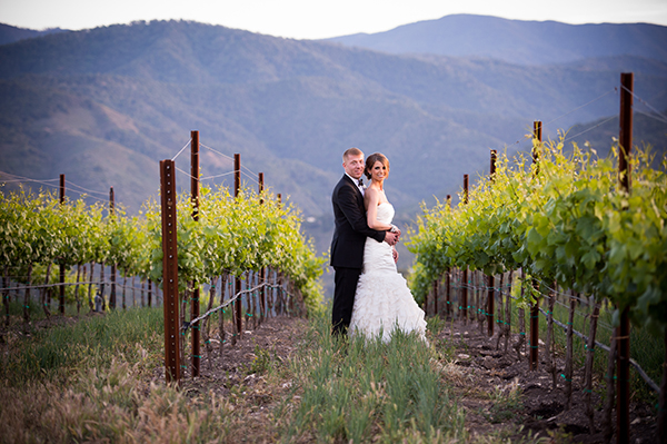 Vineyard Wedding Portraits | Scott Campbell Photography | Rustic Blush Wedding